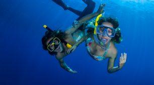 reef trips
