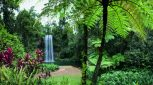 Tropical North Queensland Getaway (2 day)