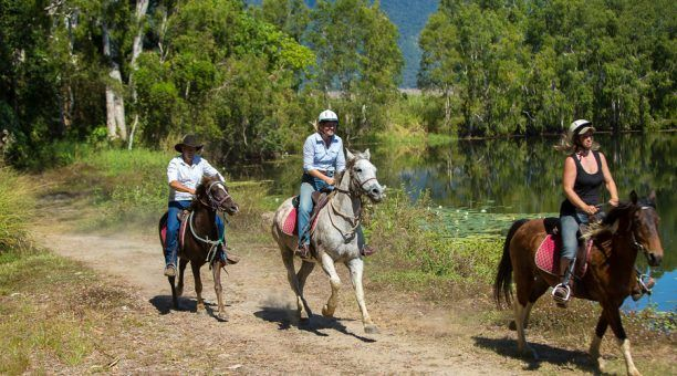 Trot along the Billabong
