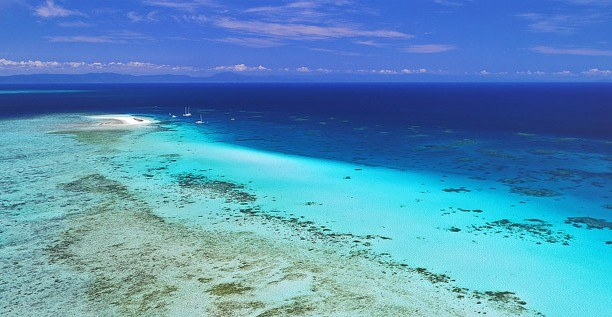 Michaelmas Cay, Great Barrier Reef, Australia